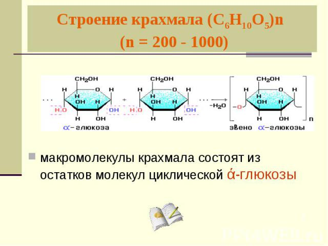 Строение крахмала (С6Н10О5)n (n = 200 - 1000) макромолекулы крахмала состоят из остатков молекул циклической ά-глюкозы