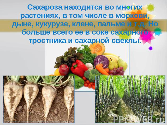 Сахароза находится во многих растениях, в том числе в моркови, дыне, кукурузе, клене, пальме и т.д. Но больше всего ее в соке сахарного тростника и сахарной свеклы.