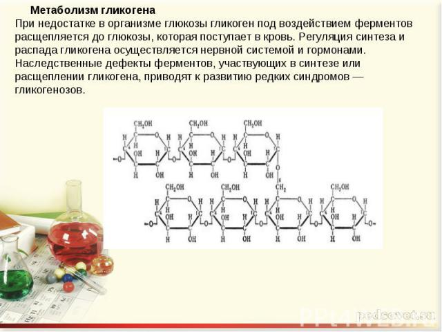 Метаболизм гликогенаПри недостатке в организме глюкозы гликоген под воздействием ферментов расщепляется до глюкозы, которая поступает в кровь. Регуляция синтеза и распада гликогена осуществляется нервной системой и гормонами. Наследственные дефекты …