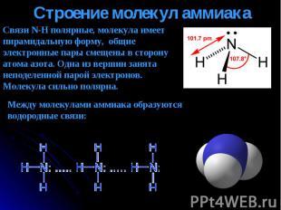 Связи N-H полярные, молекула имеет пирамидальную форму, общие электронные пары с