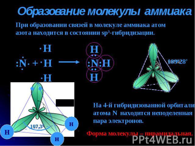 Образование молекулы аммиака При образовании связей в молекуле аммиака атомазота находится в состоянии sp3-гибридизации. На 4-й гибридизованной орбиталиатома N находится неподеленнаяпара электронов. Форма молекулы – пирамидальная.