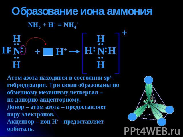 Образование иона аммония NH3 + H+ = NH4+ Атом азота находится в состоянии sp3-гибридизации. Три связи образованы по обменному механизму,четвертая – по донорно-акцепторному.Донор – атом азота – предоставляет пару электронов. Акцептор – ион Н+ - предо…