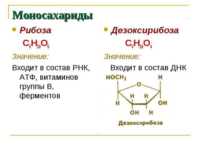Моносахариды Рибоза С5Н10О5Значение:Входит в состав РНК, АТФ, витаминов группы В, ферментов Дезоксирибоза С5Н10О4Значение: Входит в состав ДНК