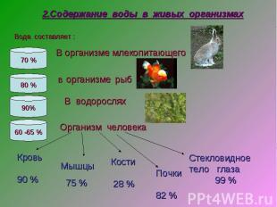 2.Содержание воды в живых организмах В организме млекопитающего В организме рыб