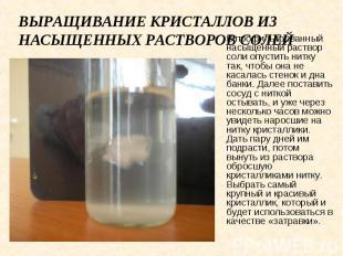 Выращивание кристаллов из насыщенных растворов солей В профильтрованный насыщенн