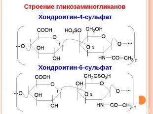 Строение гликозаминогликанов Хондроитин-4-сульфат Хондроитин-6-сульфат
