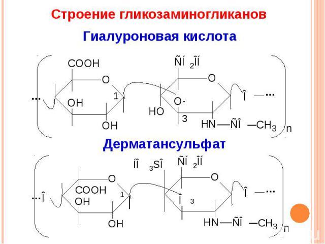 Строение гликозаминогликанов Гиалуроновая кислота Дерматансульфат
