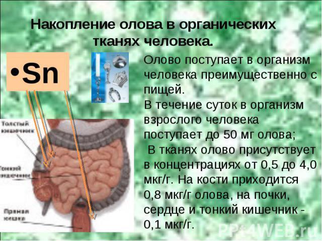 Sn Накопление олова в органических тканях человека. Олово поступает в организм человека преимущественно с пищей. В течение суток в организм взрослого человека поступает до 50 мг олова; В тканях олово присутствует в концентрациях от 0,5 до 4,0 мкг/г.…