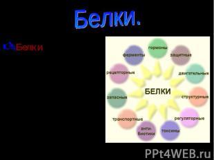 Белки. Белки – природные высокомолекулярные соединения(биополимеры), структурную