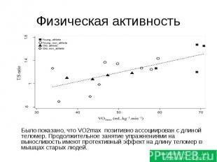 Физическая активность Было показано, что VO2max позитивно ассоциирован с длиной