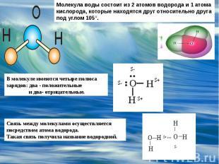 Молекула воды состоит из 2 атомов водорода и 1 атома кислорода, которые находятс