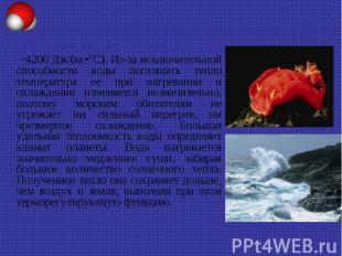 Удельная теплоемкость воды ~4200 Дж/(кг•°С). Из-за исключительной способности во