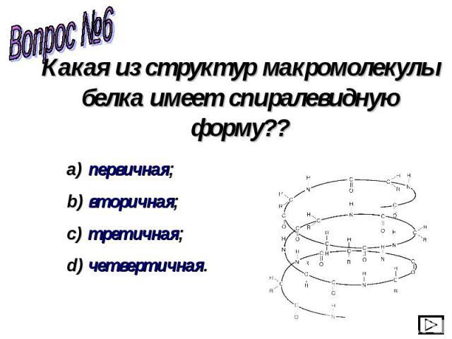 Какая из структур макромолекулы белка имеет спиралевидную форму?? первичная; вторичная; третичная; четвертичная.