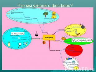 Что мы узнали о фосфоре?