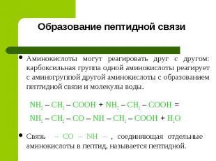 Образование пептидной связи Аминокислоты могут реагировать друг с другом: карбок