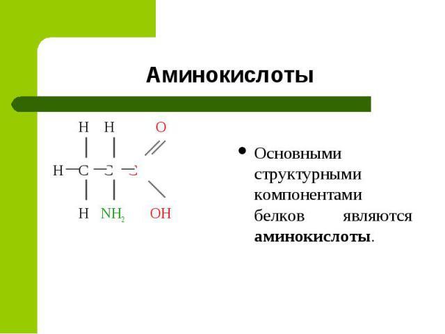 Аминокислоты H H O H C C C H NH2 OH Основными структурными компонентами белков являются аминокислоты.