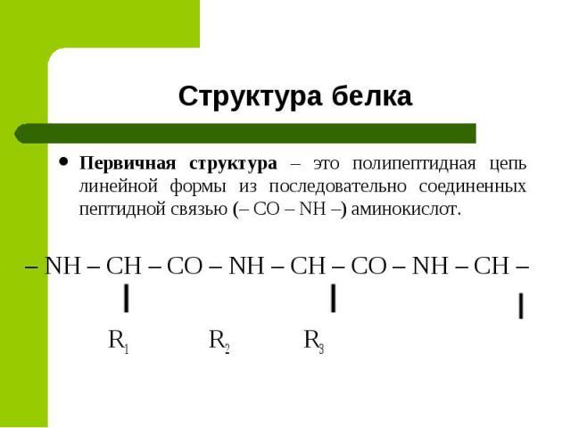 Структура белка Первичная структура – это полипептидная цепь линейной формы из последовательно соединенных пептидной связью (– CO – NH –) аминокислот. – NH – CH – CO – NH – CH – CO – NH – CH – R1 R2 R3