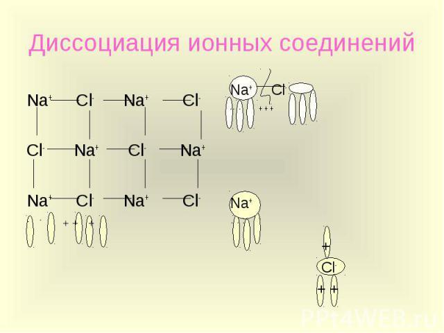 Диссоциация ионных соединений Na+ Cl- Na+ Cl-Cl- Na+ Cl- Na+Na+ Cl- Na+ Cl- - - + + +