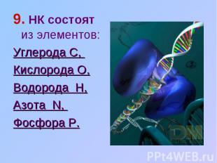 9. НК состоят из элементов: Углерода C, Кислорода O,Водорода H,Азота N, Фосфора