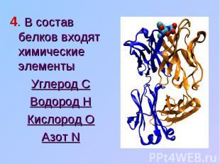 4. В состав белков входят химические элементы Углерод СВодород НКислород ОАзот N