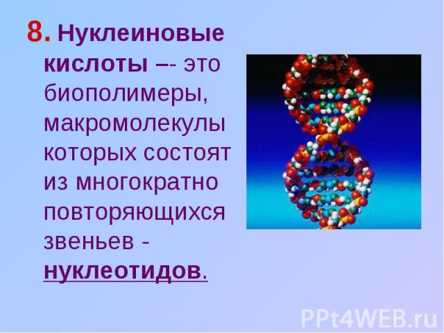 8. Нуклеиновые кислоты –- это биополимеры, макромолекулы которых состоят из многократно повторяющихся звеньев - нуклеотидов.
