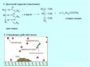 3. Щелочной гидролиз (омыление): тристеарат 4. Очищающее действие мыла: