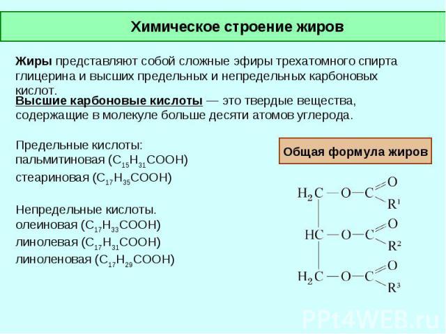 Химическое строение жиров Жиры представляют собой сложные эфиры трехатомного спирта глицерина и высших предельных и непредельных карбоновых кислот. Высшие карбоновые кислоты — это твердые вещества, содержащие в молекуле больше десяти атомов углерода…