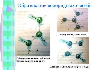 Образование водородных связей Образование водородной связи между молекулами спир