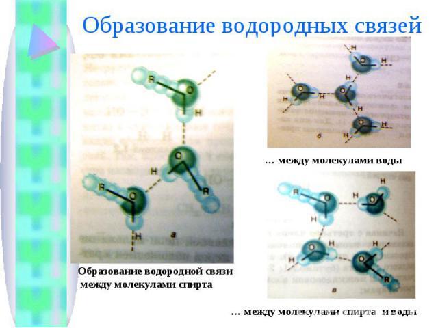 Образование водородных связей Образование водородной связи между молекулами спирта … между молекулами воды … между молекулами спирта и воды