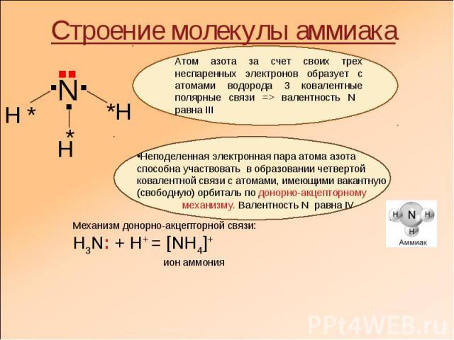 Строение молекулы аммиака Атом азота за счет своих трех неспаренных электронов образует с атомами водорода 3 ковалентные полярные связи => валентность N равна ІІІ Неподеленная электронная пара атома азота способна участвовать в образовании четвертой…