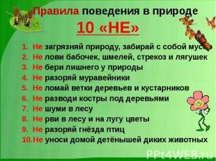 Правила поведения в природе10 «НЕ» Не загрязняй природу, забирай с собой мусорНе