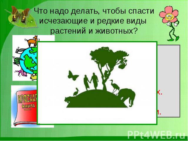 Что надо делать, чтобы спасти исчезающие и редкие виды растений и животных?
