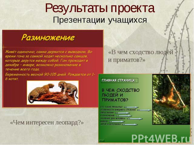 Результаты проекта Презентации учащихся «Чем интересен леопард?» «В чем сходство людейи приматов?»