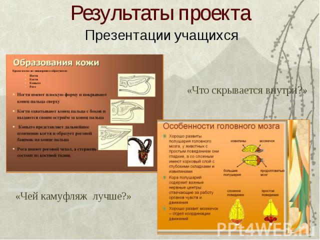Результаты проекта Презентации учащихся