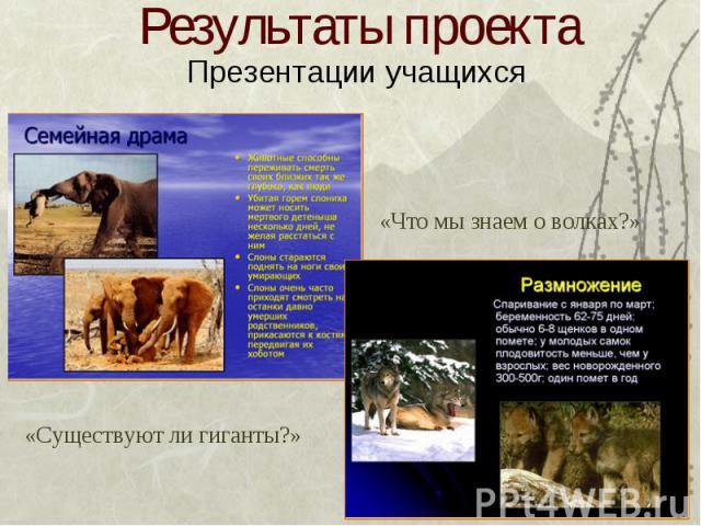 Результаты проекта Презентации учащихся «Что мы знаем о волках?» «Существуют ли гиганты?»