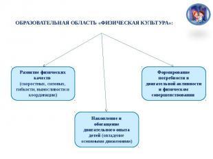 ОБРАЗОВАТЕЛЬНАЯ ОБЛАСТЬ «ФИЗИЧЕСКАЯ КУЛЬТУРА»: Развитие физических качеств (скор