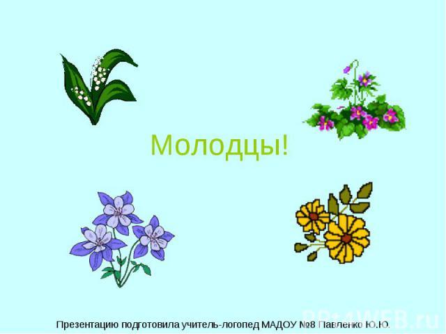 Молодцы! Презентацию подготовила учитель-логопед МАДОУ №8 Павленко Ю.Ю.