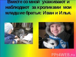 Вместе со мной ухаживают и наблюдают за кроликами мои младшие братья: Иван и Иль