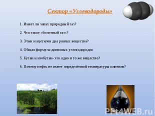 Сектор «Углеводороды» 1. Имеет ли запах природный газ? 2. Что такое «болотный га