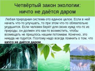 Четвёртый закон экологии:ничто не даётся даром Любая природная система-это едино
