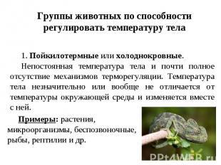 Группы животных по способности регулировать температуру тела 1.Пойкилотермные и