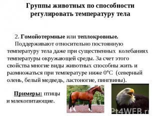 Группы животных по способности регулировать температуру тела 2.Гомойотермные ил