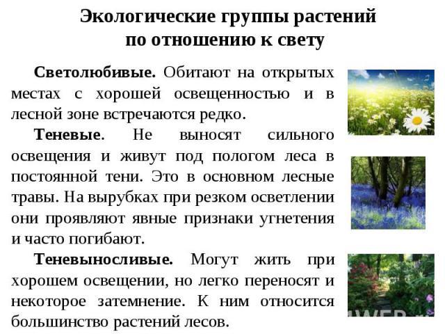 Экологические группы растений по отношению к свету Светолюбивые. Обитают на открытых местах с хорошей освещенностью и в лесной зоне встречаются редко. Теневые. Не выносят сильного освещения и живут под пологом леса в постоянной тени. Это в основном …