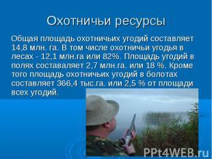 Общая площадь охотничьих угодий составляет 14,8 млн. га. В том числе охотничьи у