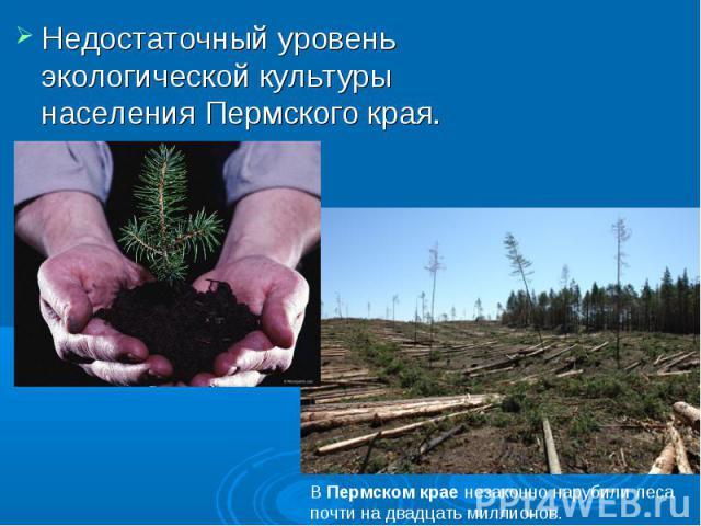 Недостаточный уровень экологической культуры населения Пермского края. ВПермскомкраенезаконно нарубилилеса почти на двадцать миллионов.