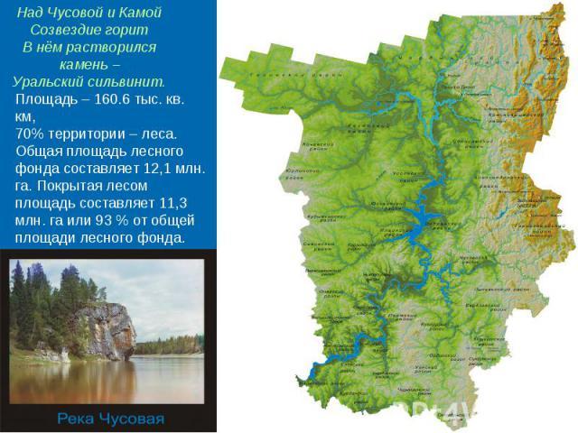 Над Чусовой и КамойСозвездие горитВ нём растворился камень –Уральский сильвинит. Площадь – 160.6 тыс. кв. км,70% территории – леса. Общая площадь лесного фонда составляет 12,1 млн. га. Покрытая лесом площадь составляет 11,3 млн. га или 93 % от общей…