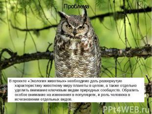 В проекте «Экология животных» необходимо дать развернутую характеристику животно