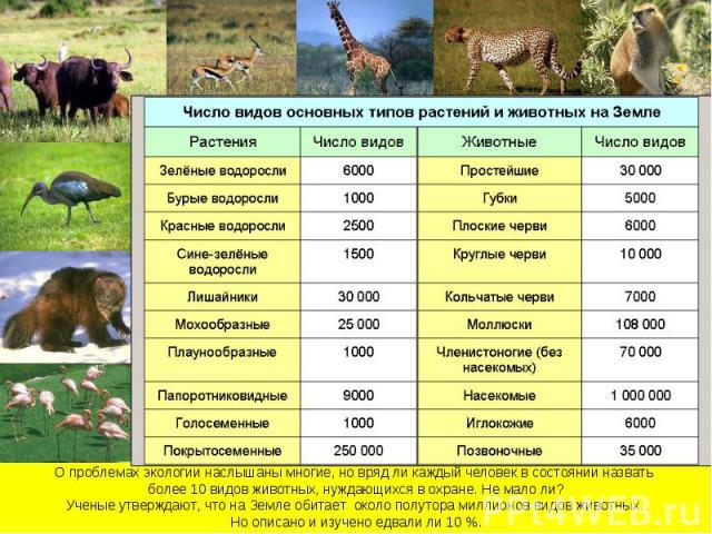 О проблемах экологии наслышаны многие, но вряд ли каждый человек в состоянии назвать более 10 видов животных, нуждающихся в охране. Не мало ли?Ученые утверждают, что на Земле обитает около полутора миллионов видов животных. Но описано и изучено едва…