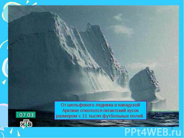 От шельфового ледника в канадской Арктике откололся гигантский кусок размером с 11 тысяч футбольных полей.
