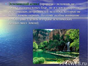 Эстетический аспект (природа – источник не только материальных благ, но и удовле